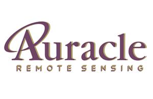 rsz_aurcale_4-300x195